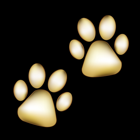 Gold Paw prints pair pet