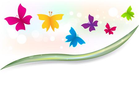Butterflies garden colorful template vector image Illustration