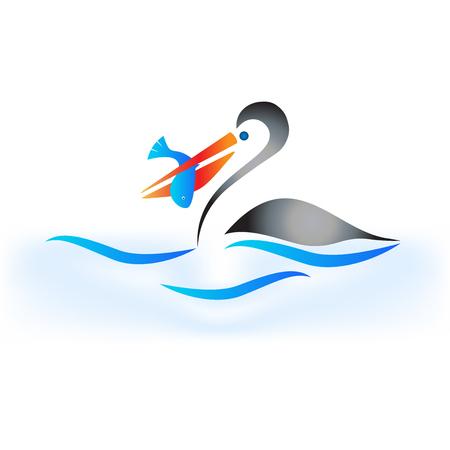 Pelican Bird icon Vector