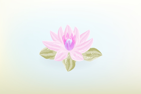 Watercolor lotus flower vintage background vector