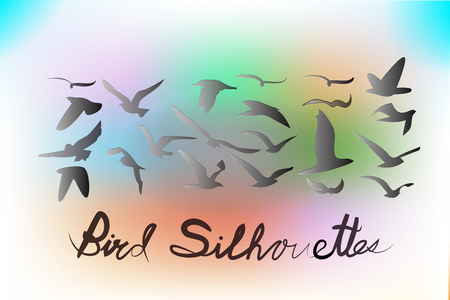 Set of birds silhouettes vector icon