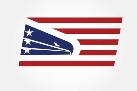 American eagle flag USA logo vector image template