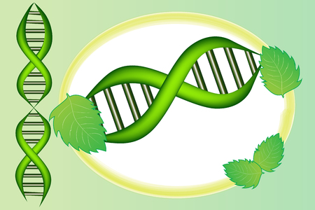 DNA cell with green leafs icon vector design template