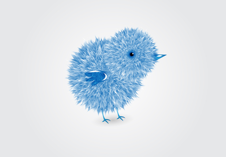 Blue chick logo vector design