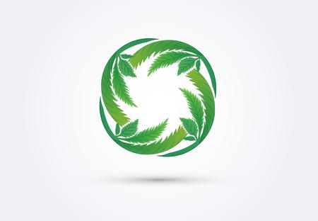 Cannabis leafs logo vector Illustration