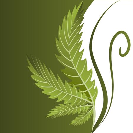 Marijuana Plant Background Vector Image Design 版權商用圖片 - 116843637