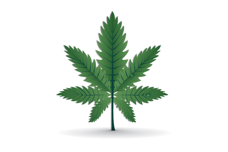 Marijuana Cannabis Leaf Plant Background Vector Image Design 版權商用圖片 - 118476405