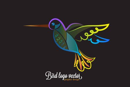 Tropical American Hummingbird vector image
