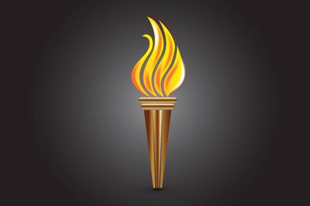 Fire flames torch vector image
