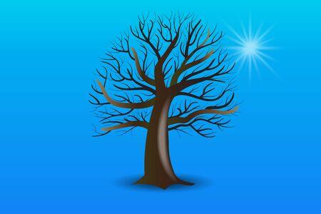 Ramas de los árboles sin imagen vectorial de hojas