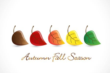 Autumn fall leafs season background vector image web design template artwork sketch details 일러스트