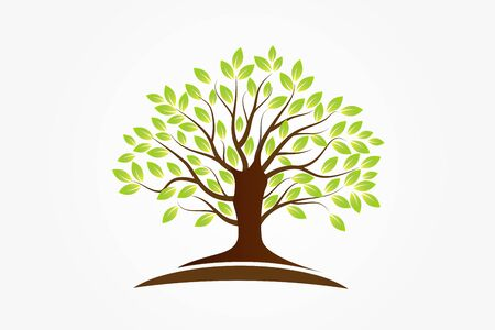 Tree logo symbol of life vector image design