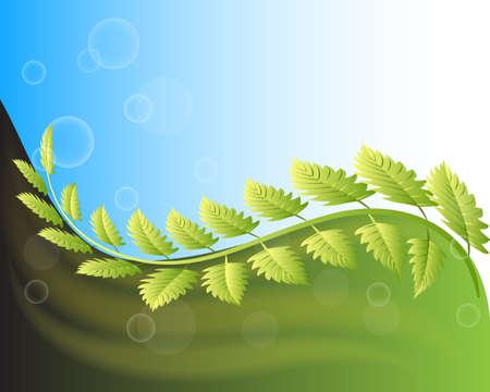 Ecology leafs beautiful garden bubbles sunny sky background logo vector image design