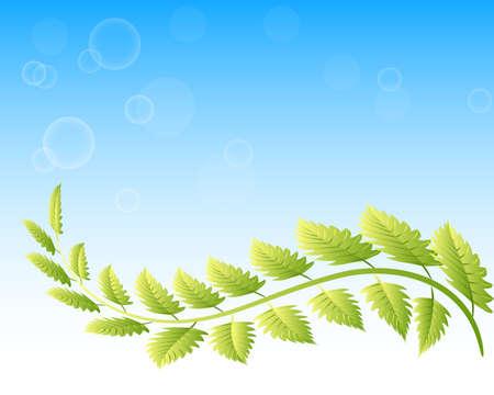 Ecology leafs beautiful blue bubbles sky background logo vector image illustration design web template