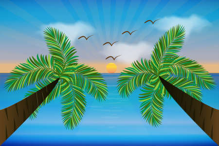 Sunny beach palm trees and birds tropical paradise summer vector image template background picture render banner template Illustration