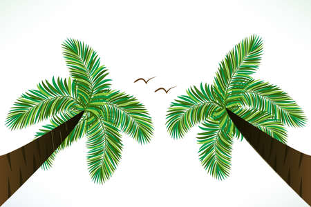 Palm trees and birds tropical paradise vector image copy space background picture render banner template