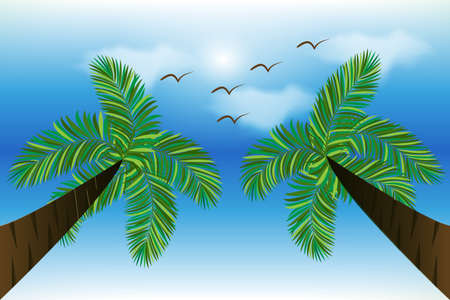 Sunny summer tropical weather beach paradise water view with green palm trees and birds vector image design background render banner template