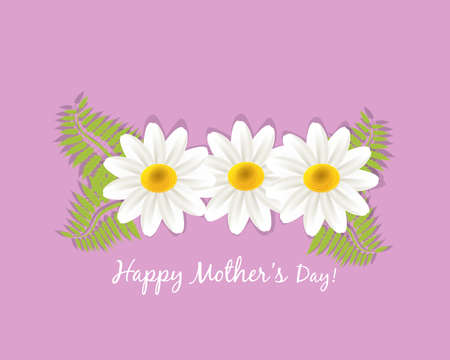 White daisy flowers happy mothers day text greetings card holidays vector image banner template graphic design business card
