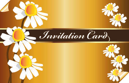 Beautiful golden vintage invitational card with daisy flowers vector image template background Illustration
