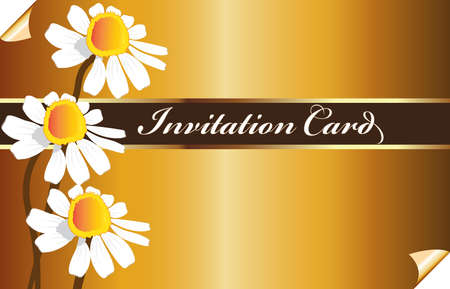 Beautiful vintage golden invitational card pattern white daisy flowers chamomile design  vector image template background