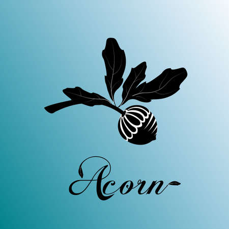 Acorn oak tree branch with acorn lettering text word invitation card design vector template on blue sky background