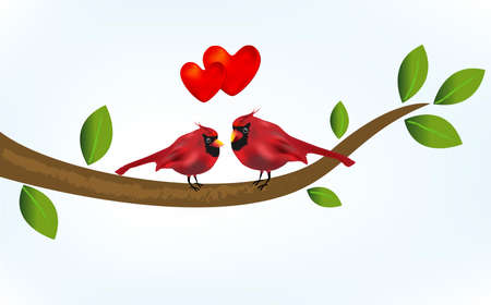 Cardinal bird in love on a branch tree. Spring time and Happy Valentines concepts love hearts vector image background template