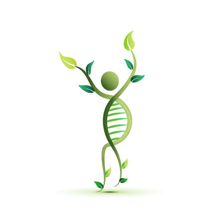 Logo human DNA plant ecology herbal science and technology graphic illustration icon vector image design logotype banner template