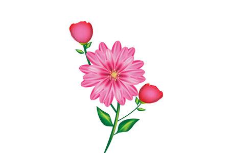 Pink gerbera blossom flower beautiful watercolor image logo vector design template on black background