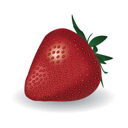 red strawberry on the white background Stock Vector - 7951949