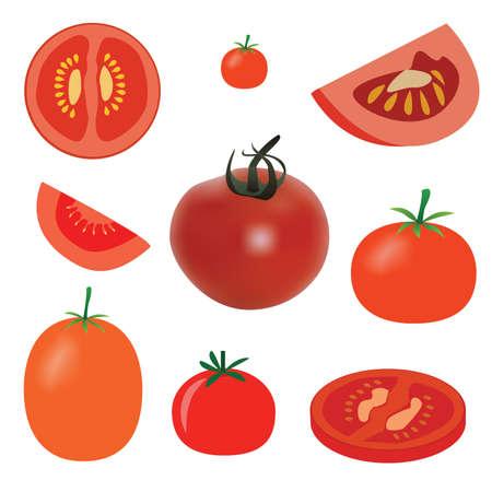 tomates: ensemble de tomate sur le fond blanc Illustration