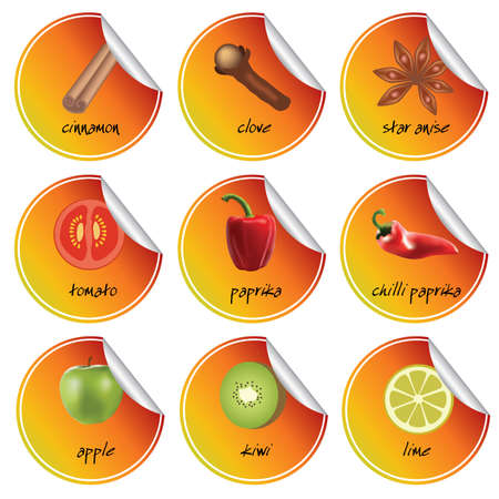 set of orange stickers with spice, vegetable and fruits Vector