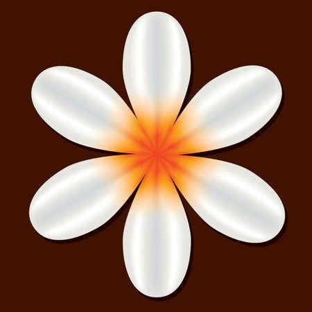 white flower on the brown background Vektoros illusztráció