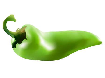 piment vert paprika sur le fond blanc