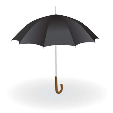 umbrella rain: black umbrella on the white background