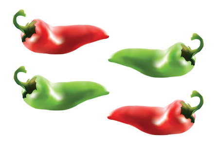 paprika: chilli paprika - two red and two green Illustration