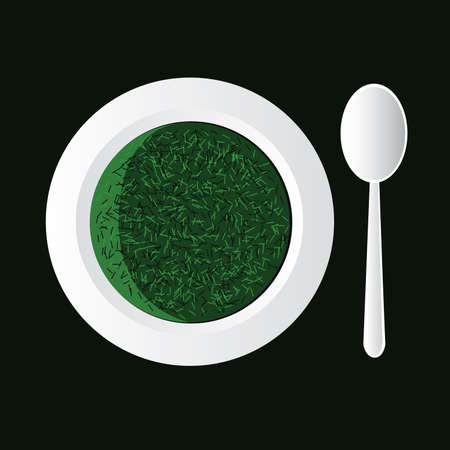 spinach: spinach soup in white bowl and spoon