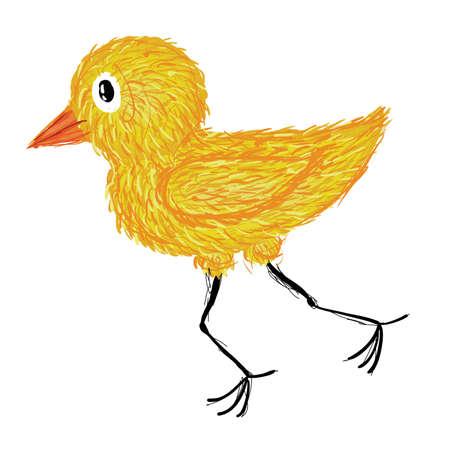 yellow chicken Stock Vector - 9039961