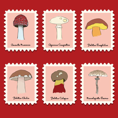 stamps collection - mushrooms set Vector