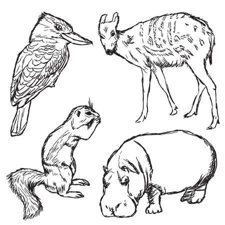animals in zoo - part one Vector