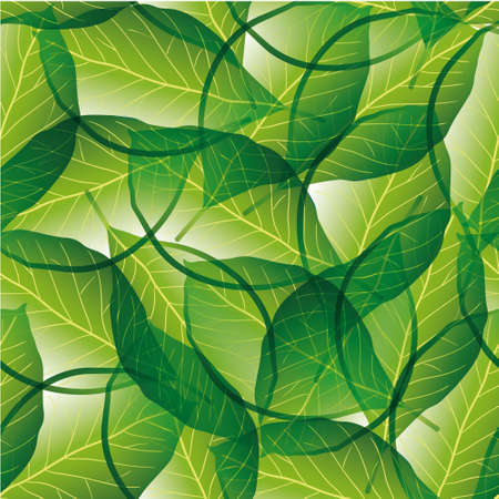 leaves seamless pattern Stock Vector - 10618494