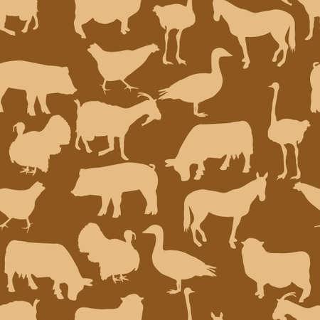 turkey cock: animals pattern