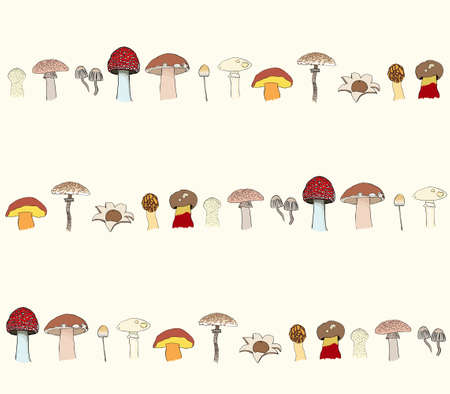 paddenstoel: patroon met champignons