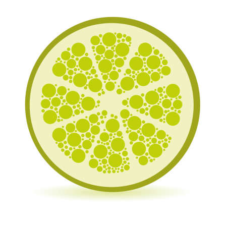 cross section: slice of dots lime, white background Illustration
