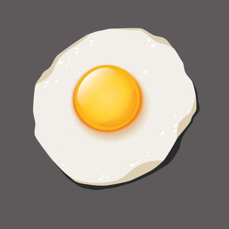 fried egg on the grey background Vector