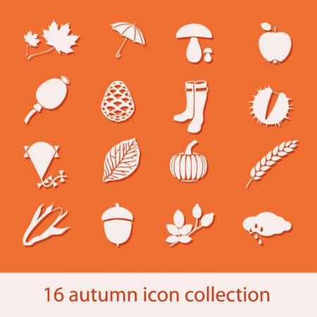 corn poppy: autumn icon collection Illustration