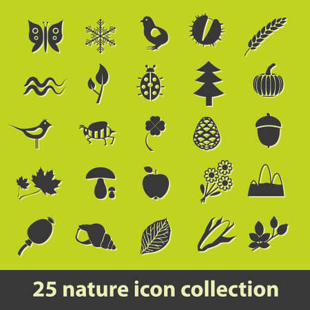 25 nature icon collection Vector