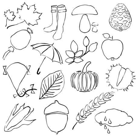 cloud ear fungus: doodle autumn images Illustration