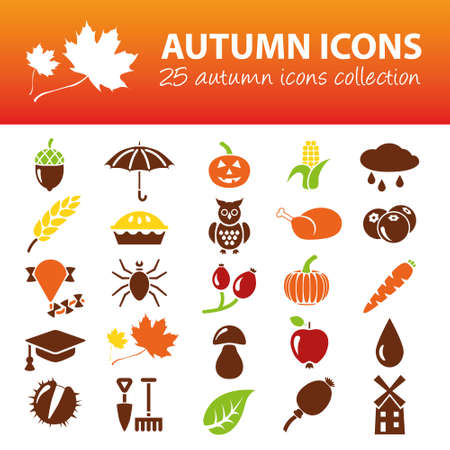 water chestnut: autumn icons