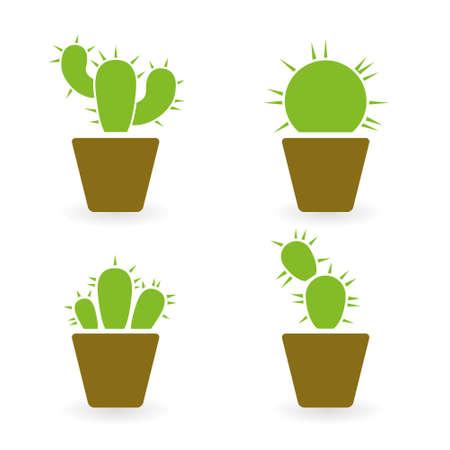 cactus flower: cactus collection Illustration