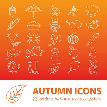 water chestnut: autumn outline icons Illustration